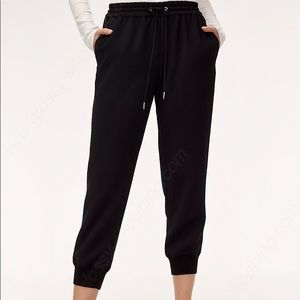 Wilfred Jogger Style Dress pants